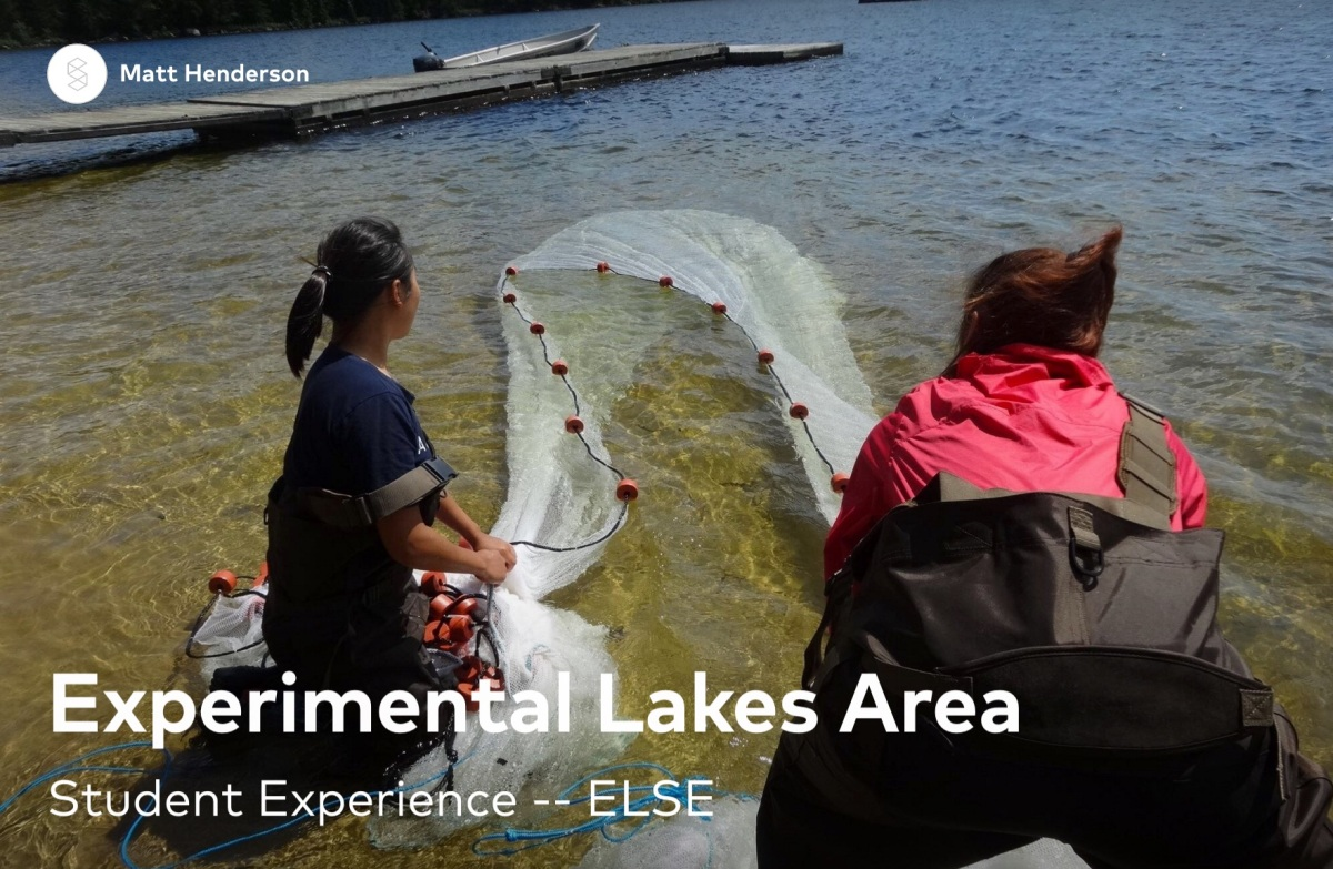 Experimental lakes area 2016 henderson hallway for Iisd check grades